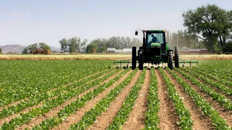 En lo que va del año, el campo exportó más que la industria