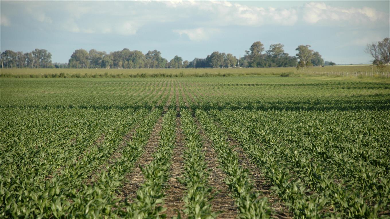 Buscan impulsar acuerdos de competitividad en el agro